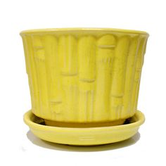 Bamboo McCoy Planter now featured on Fab.