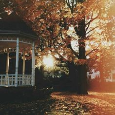 the Wonder years October Country, Autumn Aesthetic, Autumn Scenery, Autumn Cozy, Seasons Of The Year, Halloween Town, Autumn Inspiration, Nature Photos, Beautiful Landscapes