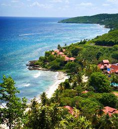 somewhere warm like Carambola Beach Resort in St. Croix