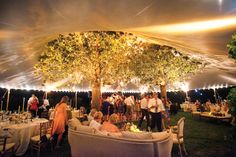 tented-wedding-at-night, I love the tree inside the tent
