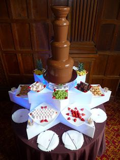 Chocolate Fountain Hire at Elmers Court Hotel - Natalia & James... ~ Hot Chocolates Blog