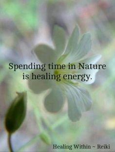 Spending time in Nature  -                                     is healing energy.