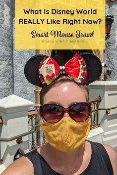 Disney World Secrets, Disney World Hotels, Disney World Florida, Disney World Parks, Walt Disney World Vacations, Disney World Tips And Tricks, Packing List For Disney, Disney World Vacation Planning, Disney Cruise Tips