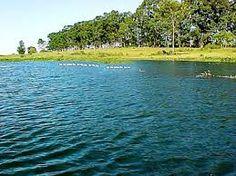 lugares lindos da amazonia - Pesquisa Google