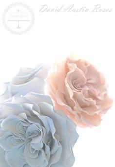 Pretty gumpaste David Austin Roses.