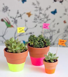 DIY Neon Dipped Plant Pots at Handmade Charlotte. Spring crafts, yay!