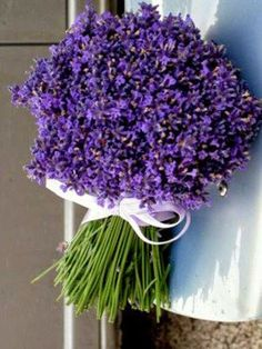 Ana Ortiz, Purple Things, Stunningly Beautiful, Yard Ideas, Lilac, Sign, Weddings, Floral, Google