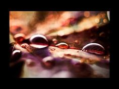 Beethoven - A melody of tears - YouTube