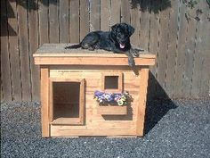 Ren - Oregon:  several years of being tried and tested, this dog house has been proven to be the most comfortable and the safest home you can build for your beloved dog.