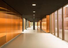 Image 11 of 45 from gallery of Public Middle School Of Labarthe-Sur-Lèze / LCR Architectes. Photograph by Sylvain Mille School Building Design, School Design, Education College, Elementary Schools, Architecture Design, School Play, Dormitory, Commercial Design, Cladding