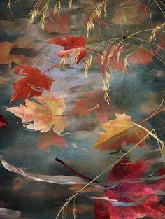 Dario Campanile painting