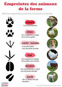 Reconnaître les empreintes - les animaux de la ferme - http://www.cabaneaidees.com/downloads/reconnaitre-les-empreintes-les-animaux-de-la-ferme/