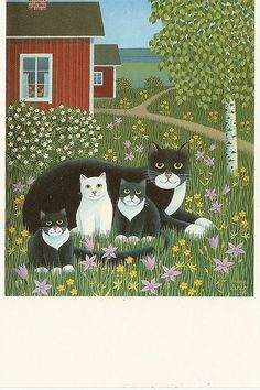 Cats in the garden | Flickr - Photo Sharing!