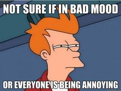 Not sure if in a bad mood, or everyone is being annoying. haha I feel this way quite a bit!