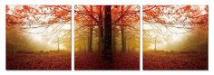 Modrest Autumn 3-Panel Photo on Canvas VGSC-SH-71210ABCProduct : 15305Features:3 PanelsHigh quality Photo on CanvasModern lookHas beautiful contrastDeep natural settingDimension:Each Panel Painting: W24