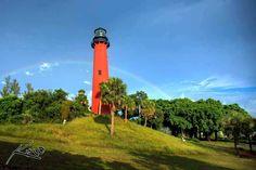 Toronynézőben Floridában - Szép világunk magazin