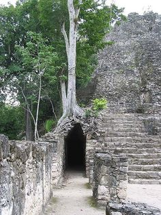 Ruinas de Coba, Quintana Roo