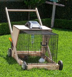 """From BHG.com: """"Keep your lawns short with the nifty guinea pig lawn mower"""" Not sure what to think of this."""