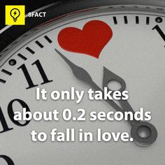 Are these facts true or false? Wierd Facts, 8 Facts, Intresting Facts, Wtf Fun Facts, Awesome Facts, Random Facts, Random Stuff, Stupid Stuff, Crazy Facts