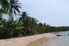 Phu Quoc Kim Bungalows is a budget bungalow hotel right on a nice part of Duang Dong Beach (Long Beach). It has 20 simple rooms with the necessary facilities for a comfortable stay, just steps from the sand.   #beaches #beautiful #holiday #family #restaurant #phuquoc #vietnam   http://thebeachfrontclub.com/beach-hotel/asia/vietnam/phu-quoc/duong-dong-beach-central/phu-quoc-kim-bungalows/