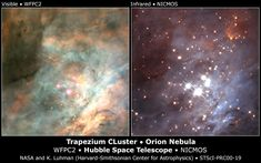 Trapezium cluster in the Orion Nebula, from the Hubble Space Telescope.   Left: optical spectrum image taken with Hubble's WFPC2 camera, with stars shrouded in glowing gas and dust.  Right, infrared image taken with Hubble's NICMOS, revealing a swarm of stars and brown dwarfs.
