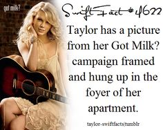 Taylor Swift Facts All About Taylor Swift, Taylor Swift Hair, Taylor Swift Concert, Taylor Swift Facts, Taylor Swift Quotes, Taylor Swift Pictures, Taylor Alison Swift, Live Taylor, Red Taylor