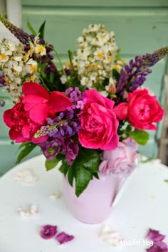 Madelief: Rose is a rose is a rose, is a rose