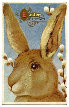 *The Graphics Fairy LLC*: Vintage Easter Graphic - Beautiful Big Bunny. To use in an Easter project. Vintage Greeting Cards, Vintage Postcards, Vintage Images, Vintage Art, Vintage Ephemera, Easter Bunny Images, Easter Art, Easter Ideas, Graphics Fairy