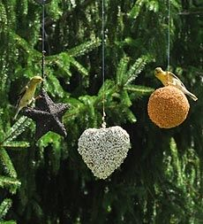 Set of 3 Hanging Bird Seed Ornaments Buy 2 or more Sets at $17.95 each in Holiday 2012 from Plow & Hearth