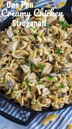 Chicken Stroganoff is creamy and hearty, loaded with thick egg noodles and juicy mushrooms. This easy weeknight dinner is ready in about 30 minutes. Egg Noodle Recipes, Pasta Recipes, Chicken Recipes, Cooking Recipes, Chicken And Egg Noodles, Homemade Egg Noodles, Dinner Entrees, Dinner Recipes, Dinner Ideas