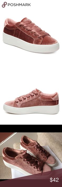"Steve Madden Bertie Velvet Lace up Sneaker 6 & 7.5 Brand new in box Super cute  Women size 6 & 7.5  Fast shipping 🔥price is absolutely firm🔥  You'll be pretty in pink wearing these darling sneakers from Steve Madden. • Featured in blush • Lace up sneakers • Closed round toe • Closed back • 1.5"" platform • Manmade upper and sole • Imported Steve Madden Shoes Sneakers"