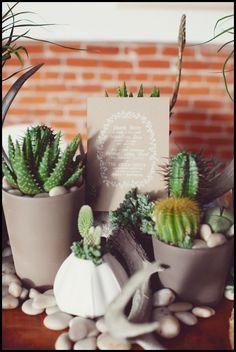 Succulent_centerpieces