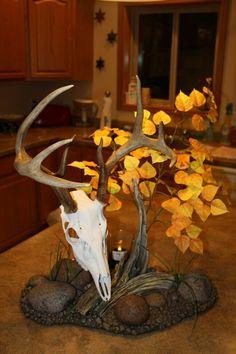 Whitetail European m Whitetail European mount Deer Mount Decor, Deer Decor, Skull Decor, Taxidermy Decor, Taxidermy Display, Antler Crafts, Antler Art, Deer Skulls, Deer Antlers