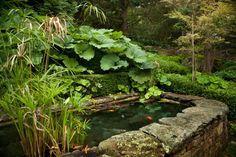 Sharon Estate — Michael Trapp Inc Landscape Design, Garden Design, Fish Pool, Outdoor Living, Outdoor Decor, Garden Accessories, Water Garden, Outdoor Projects, Water Features