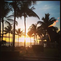 Coconut Grove, Kailua Kona Hawaii