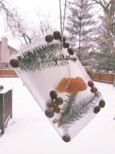 Enjoy this easy Winter craft that combines science, nature & art -- perfect for kids of all ages!