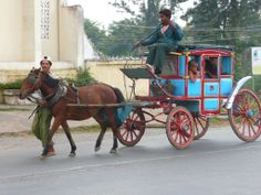 Baby monks in a horse carriage, Pyin U Lwin