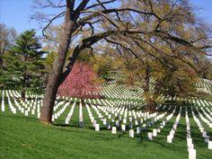 Arlington National Cemetery, VA