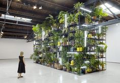 Installation view, Rashid Johnson, Fly Away. Photo: Martin Parsekain © the artist, courtesy of Hauser & Wirth, New York.