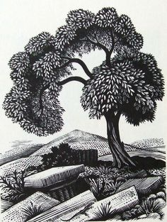 REYNOLDS STONE wood engraving. Landscape suggested by travels in Greece. Unpublished. 1936. Used as a Christmas card in 1946.