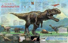 91 mejores imágenes de descubrimientos cientificos 2012