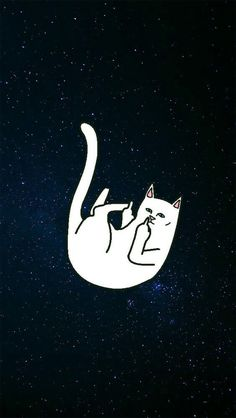 RIP n DIP white cat w/middle finger Wallpaper