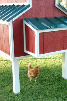 Chicken coop designs and ideas are essential when raising poultry. With this updated list, building a chicken coop has never been easier! Large Chicken Coop Plans, Chicken Coop Pallets, Easy Chicken Coop, Portable Chicken Coop, Chicken Coop Designs, Backyard Chicken Coops, Chickens Backyard, Chicken Coop Building Plans, Pet Chickens