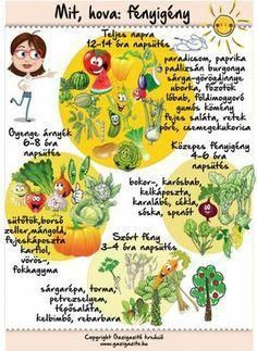 Here is some DIY backyard gardening advice on three aspects of gardening, indoor, organic and vegetable. For many people vegetable gardening is a passion