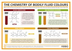 Blood is red, urine is yellow, and faeces are brown. Why? Chemistry*! *Disclaimer: shout-outs to biology and physics too.