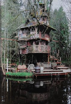 Redmond Treehouse (Redmond/ Washington)