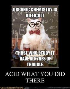 Best of Chemistry Cat, the Science Meme memes The Best of the Chemistry Cat Meme witze Chemistry Cat, Chemistry Lessons, Organic Chemistry, Chemistry Classroom, Chemistry Teacher, Cat Jokes, Nerd Jokes, Science Puns, Physics Jokes