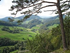 Swiss Countryside by trumpeter_16, via Flickr