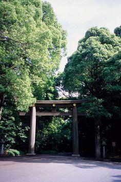 Meiji Shrine, Tokyo, Japan: photo by Sivaz, via Flickr
