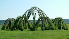 8 meter high willow structure by Marcel Kalberer Architecture Design, Organic Architecture, Landscape Architecture, Above Ground Garden, Willow Fence, Living Willow, Grow Home, Parks, Garden On A Hill